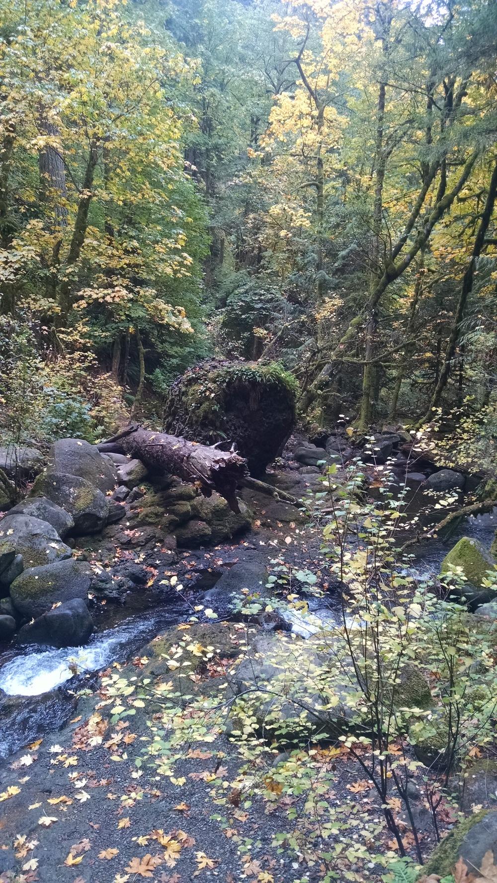 Maltnomah Falls, Portland, Oregon