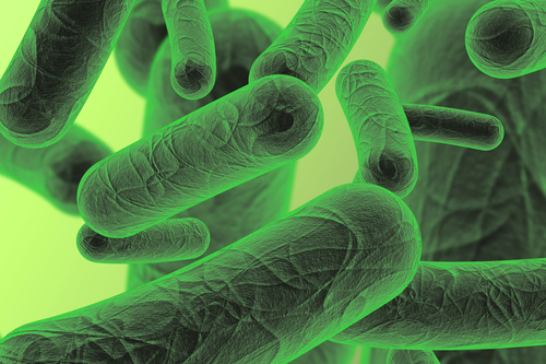 Beneficial microbes are combined to provide superior performance in your septic system.