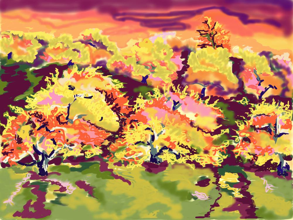 Autumn Quandary