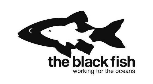 The_Black_Fish_logo,_low_resolution,_March_2013.jpg