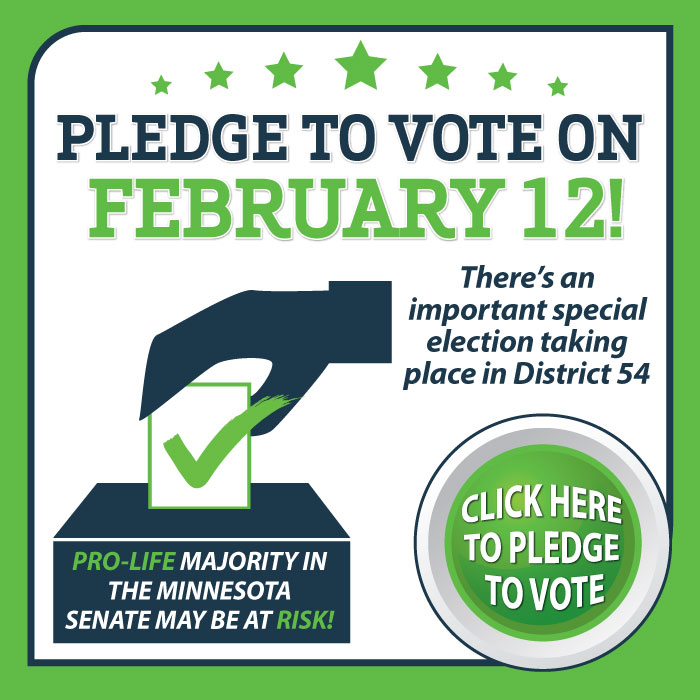 Pledge-to-Vote.jpg