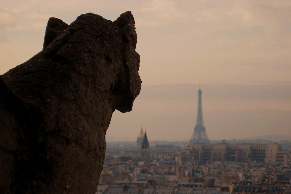 A gargoyle watches over the Paris skyline from Notre-Dame Cathedral