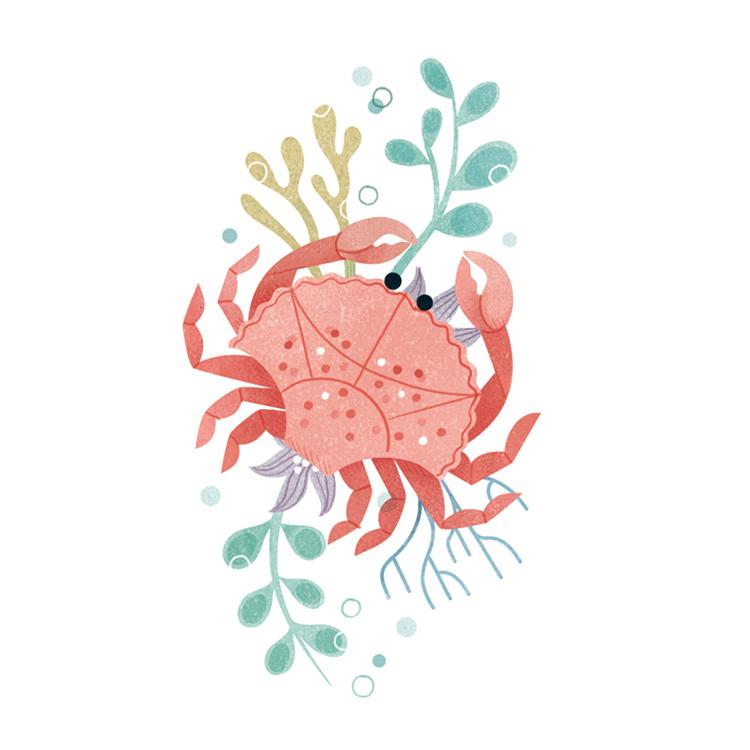 crabbyclareowen.jpg