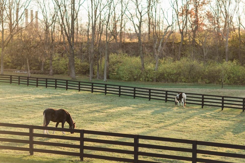 winter-barn-wedding-canopy-creek-farm-ohio_5381.jpg