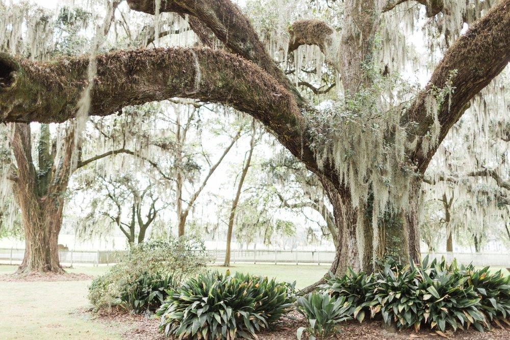 new-orleans-destination-wedding-photographer_9650.jpg