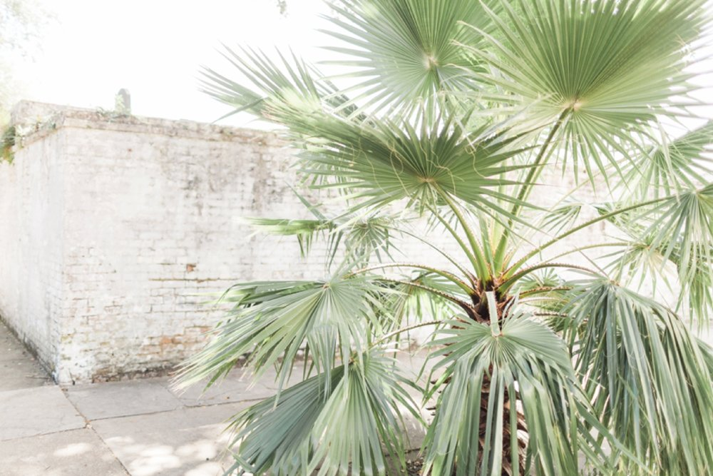 garden-district-new-orleans-destination-wedding-photographer_9771.jpg
