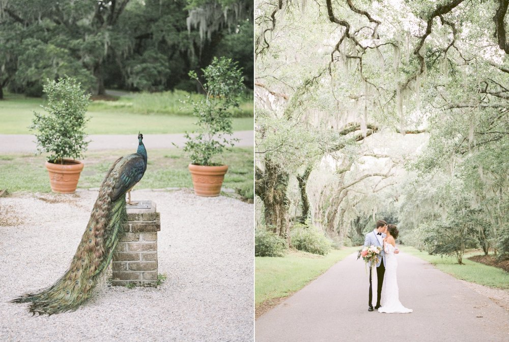 Charleston-South-Carolina-Beautiful-Film-Wedding-Photographer-Magnolia-Plantation-and-Gardens-Wedding-Photos_5139.jpg