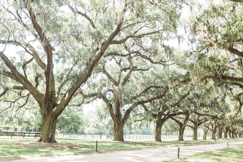 Charleston-South-Carolina-Wedding-Photographer-Destination-Wedding-Photography_5201.jpg