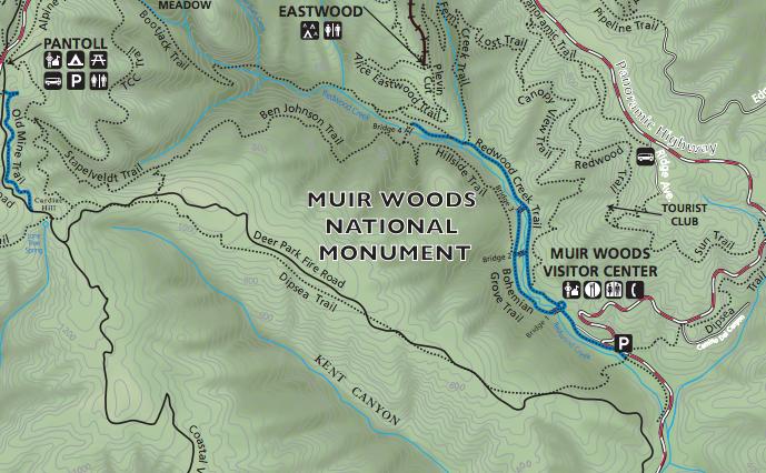 muirwoodsmap