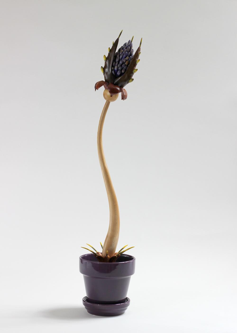 Bloom #3 by Sam Hingston