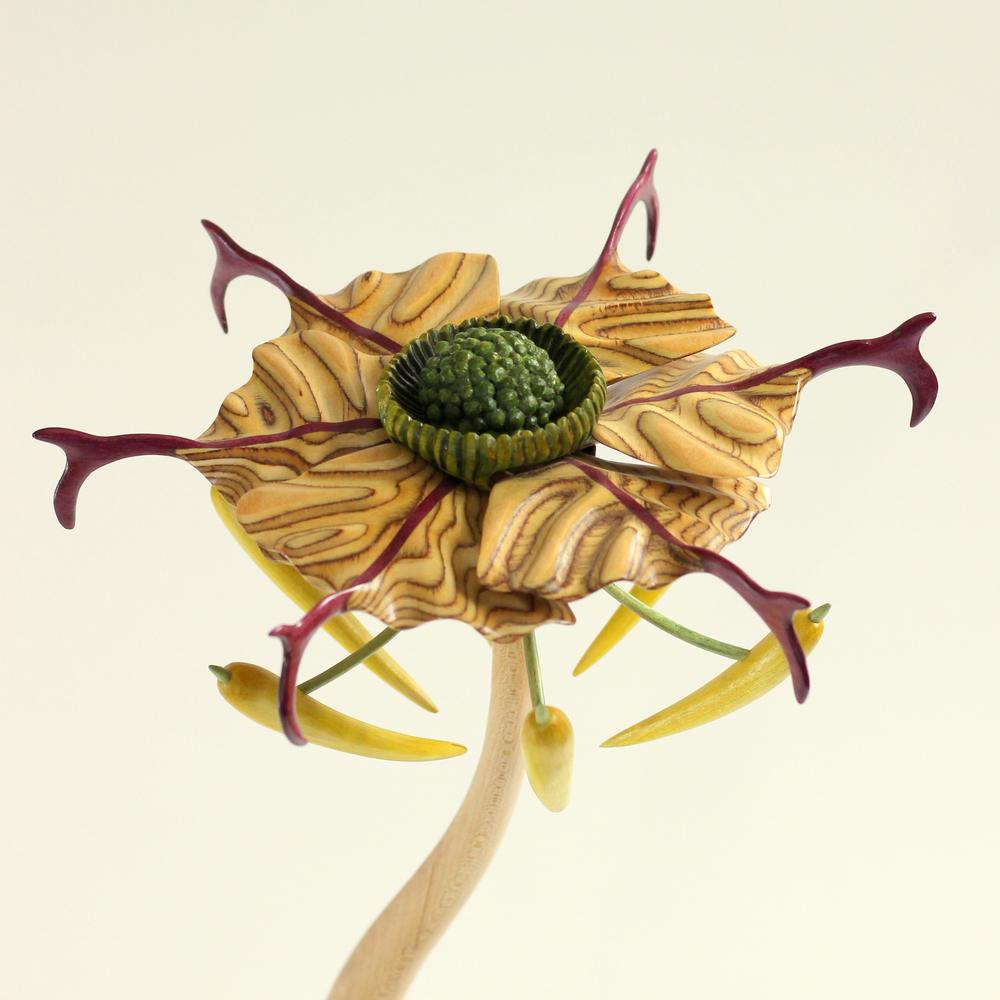 Bloom #4