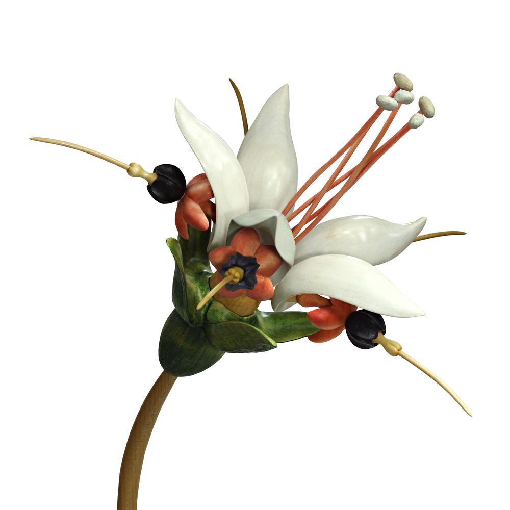 Bloom #16