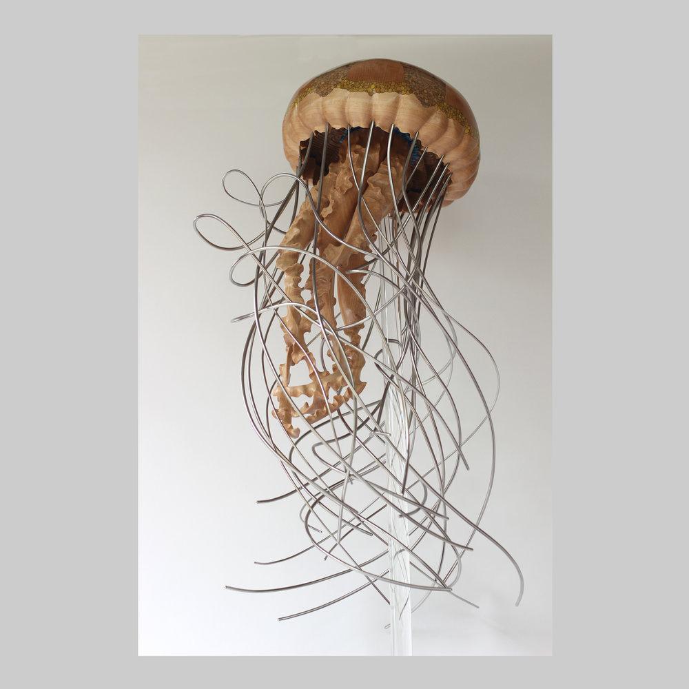 Jellyfish Series #5