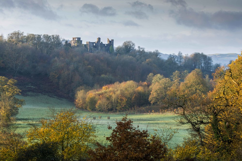 Dinefwr Castle amongst the Autumn Colours