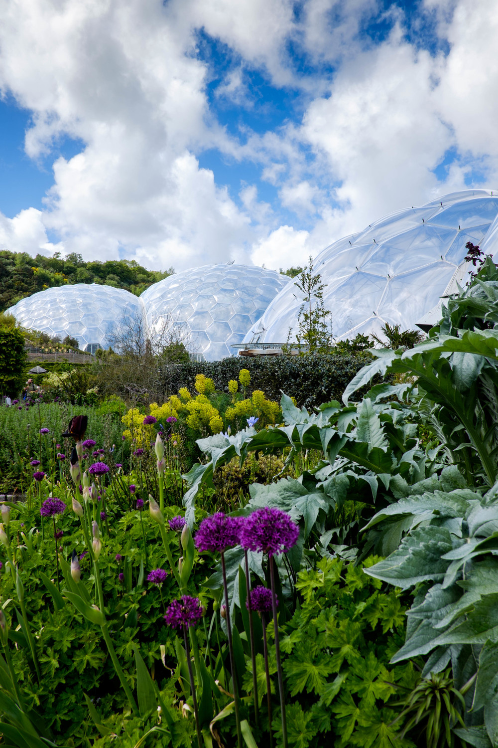 The biomes at the eden project