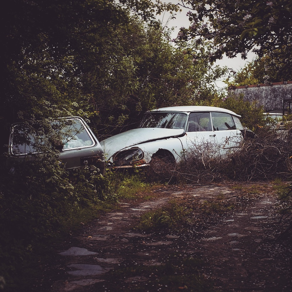 Car graveyard with an awesome old citreon in tregonce