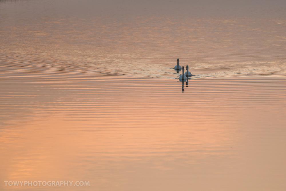 20140910_Landscape_Towy-3.jpg