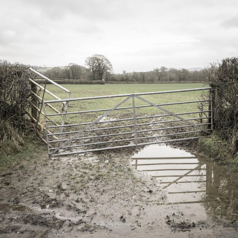 Y Gat - The Gate