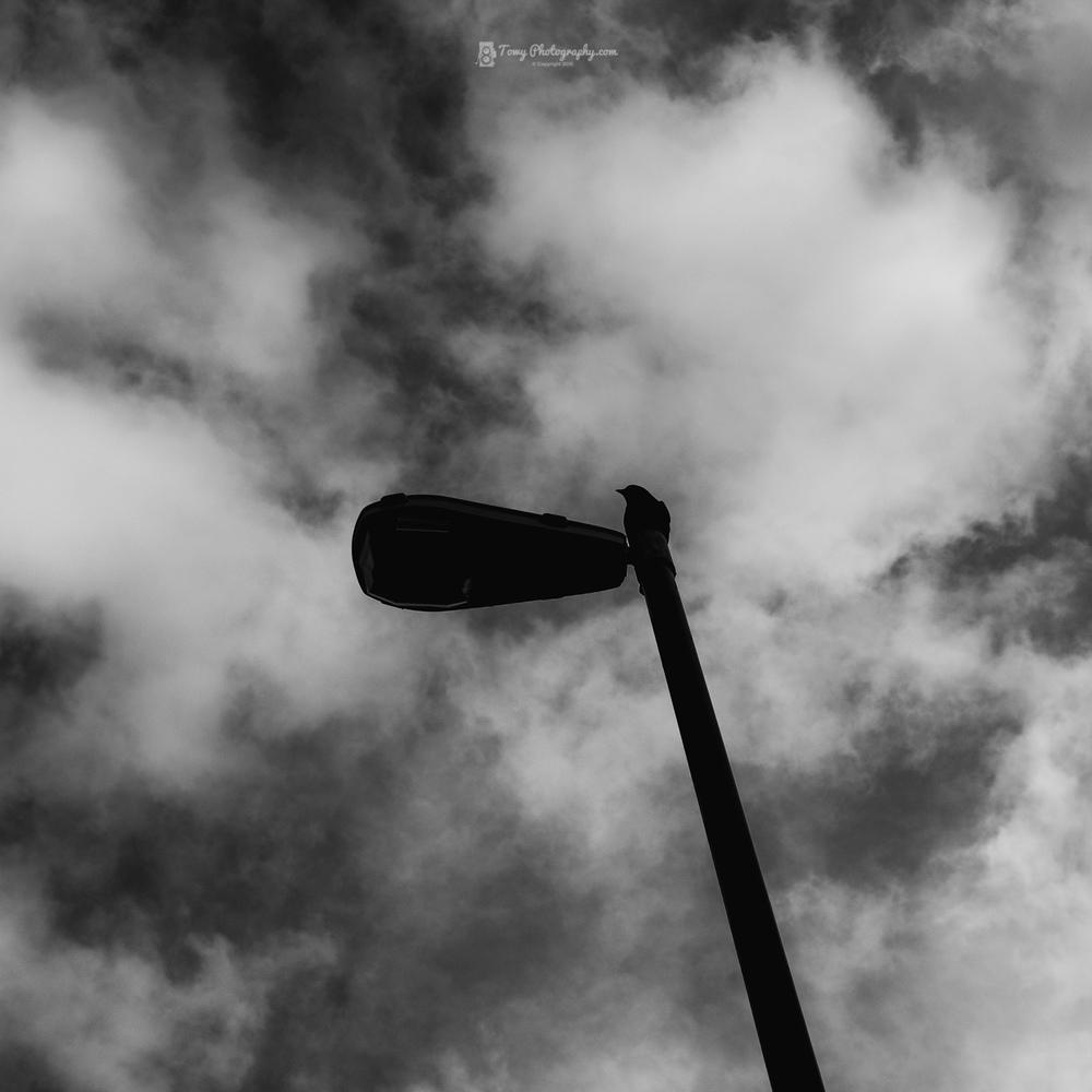 20160209_Street_Carmarthen-2-Edit.jpg