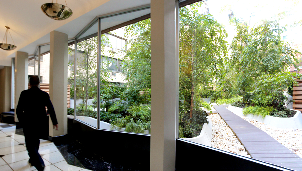 Building Residents walk through the atrium and encounter the natural world on a daily basis.