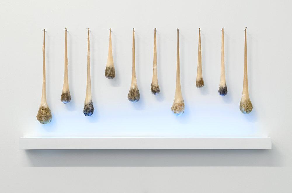 margaux-crump-desiring-sterilizing-desiring.jpg