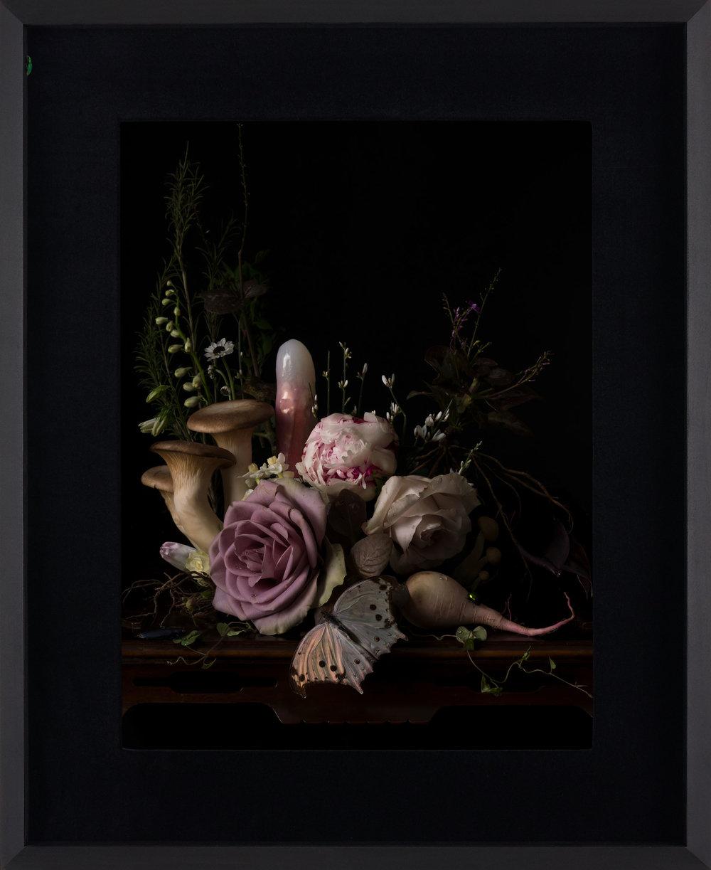 Margaux Crump_Stilled Chimeras_framed_4.jpg