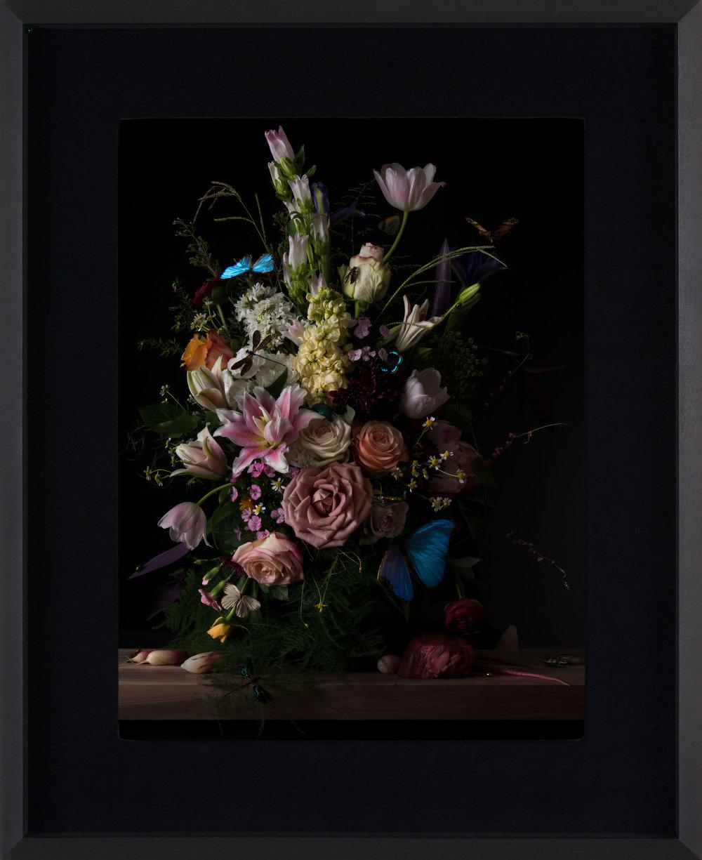 Margaux Crump_Stilled Chimeras_framed_5.jpg