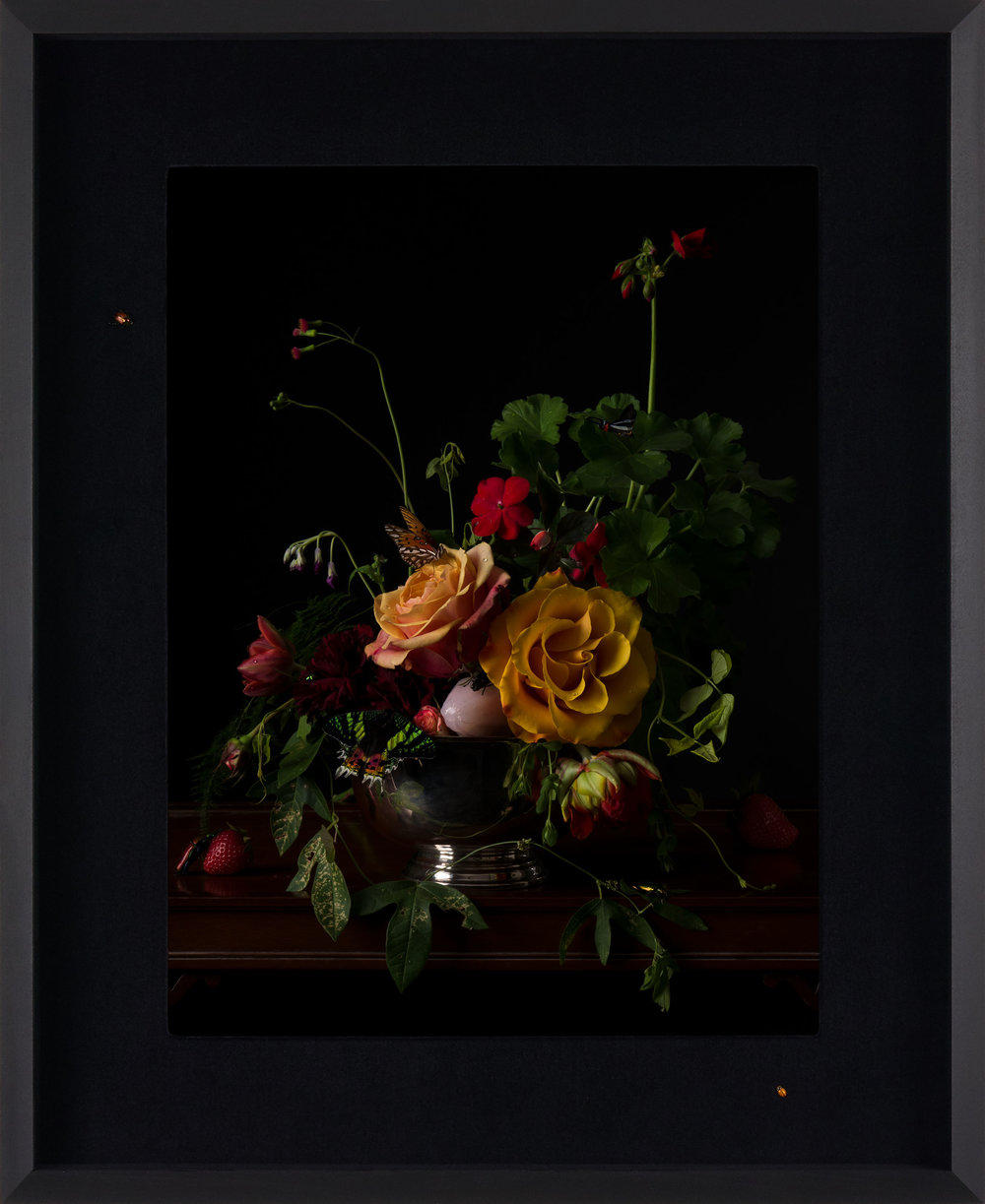 Margaux Crump_Stilled Chimeras_framed_9.jpg