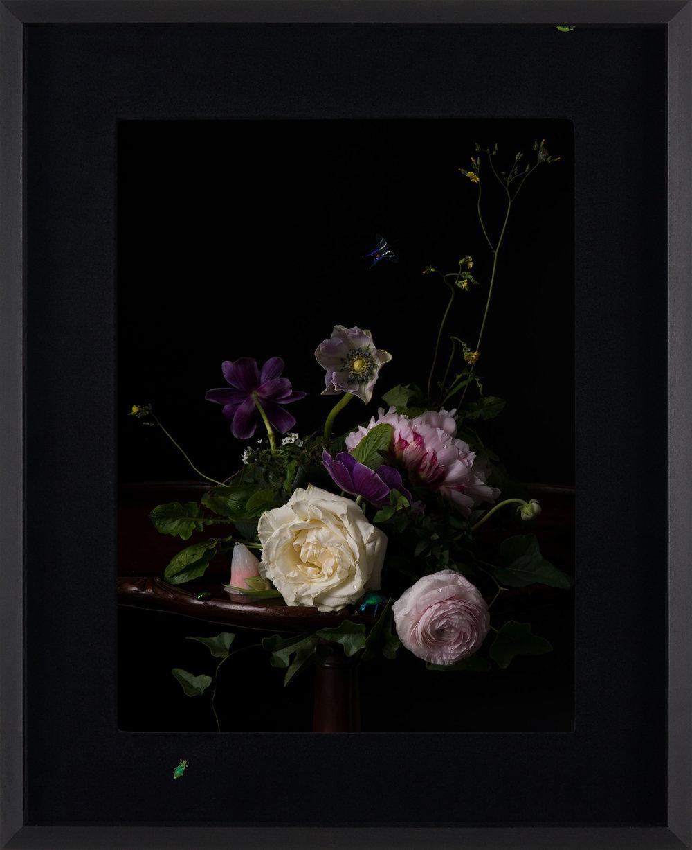 Margaux Crump_Stilled Chimeras_framed_13.jpg