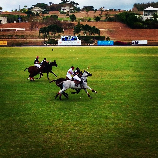 Spirited match tied 5 all between @ApesHillPolo and ICBL