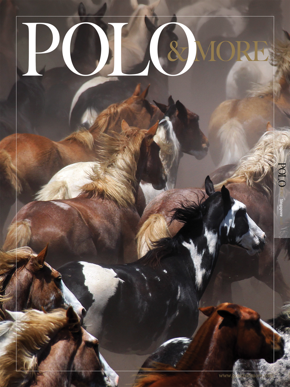 Polo & More 2018 - Singapore-Cover.png
