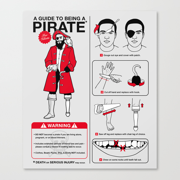 A Guide To Being A Pirate