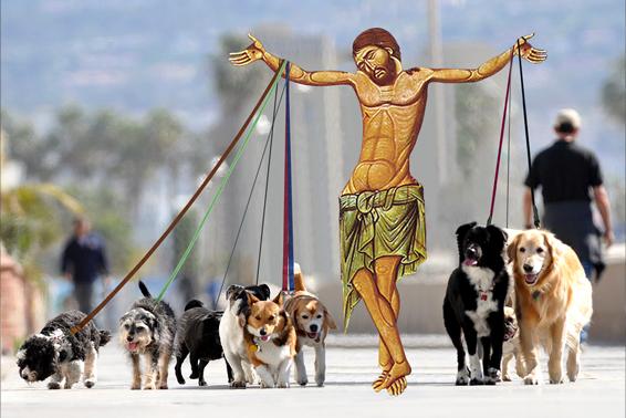 dogwalker_site.jpg