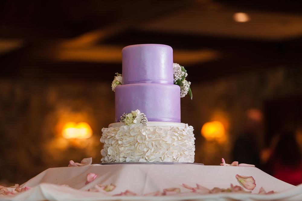 ariel_hawkins_photography_wedding_cake_buffalo_ny.jpg