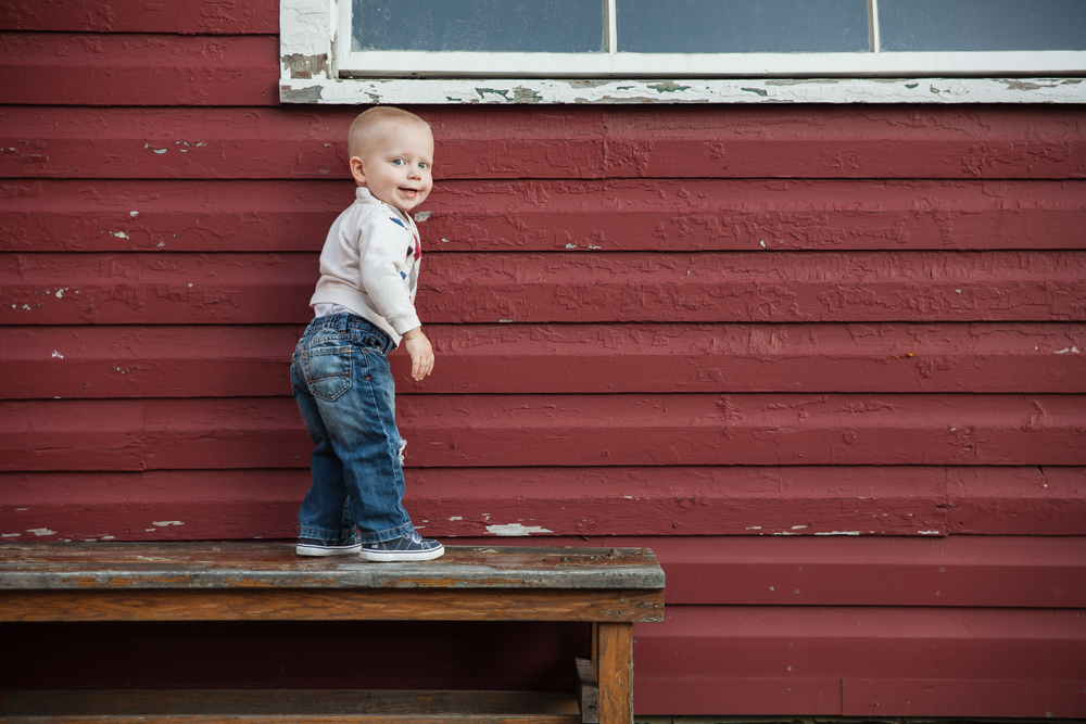 ariel_hawins_photography_family_sesssion_standing_knox_farms.jpg