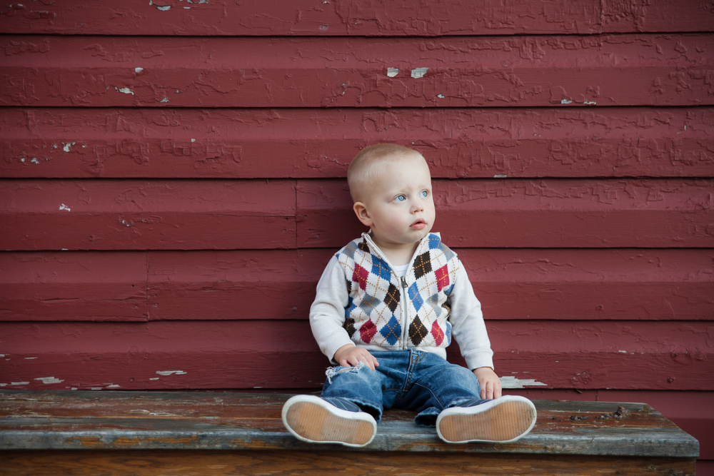 ariel_hawins_photography_family_sesssion_sitting_knox_farms.jpg