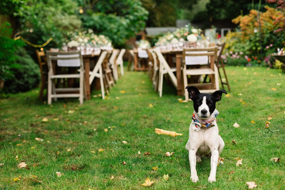 'Wedding breakfast ready' by  Paul Jospeh Photography