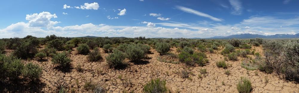 Meditation in the sage of Taos Mesa yesterday, looking north.