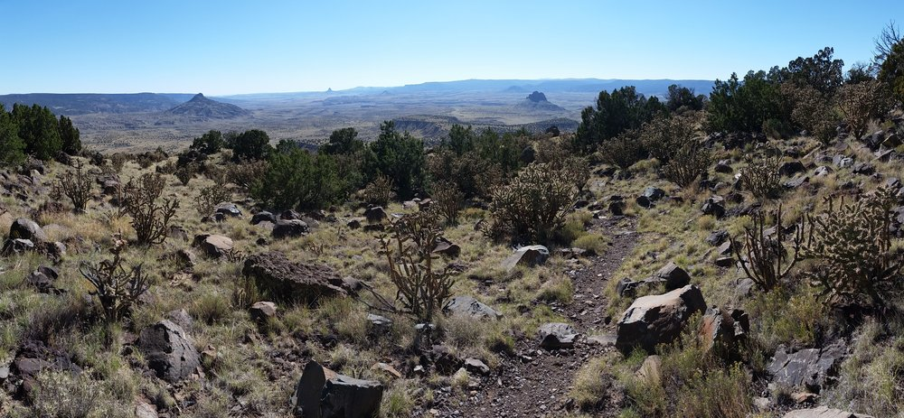 Volcanic plugs can be seen out in the blue haze of the Rio Puerco valley.  This is about where Max nearly stepped on the rattlesnake.