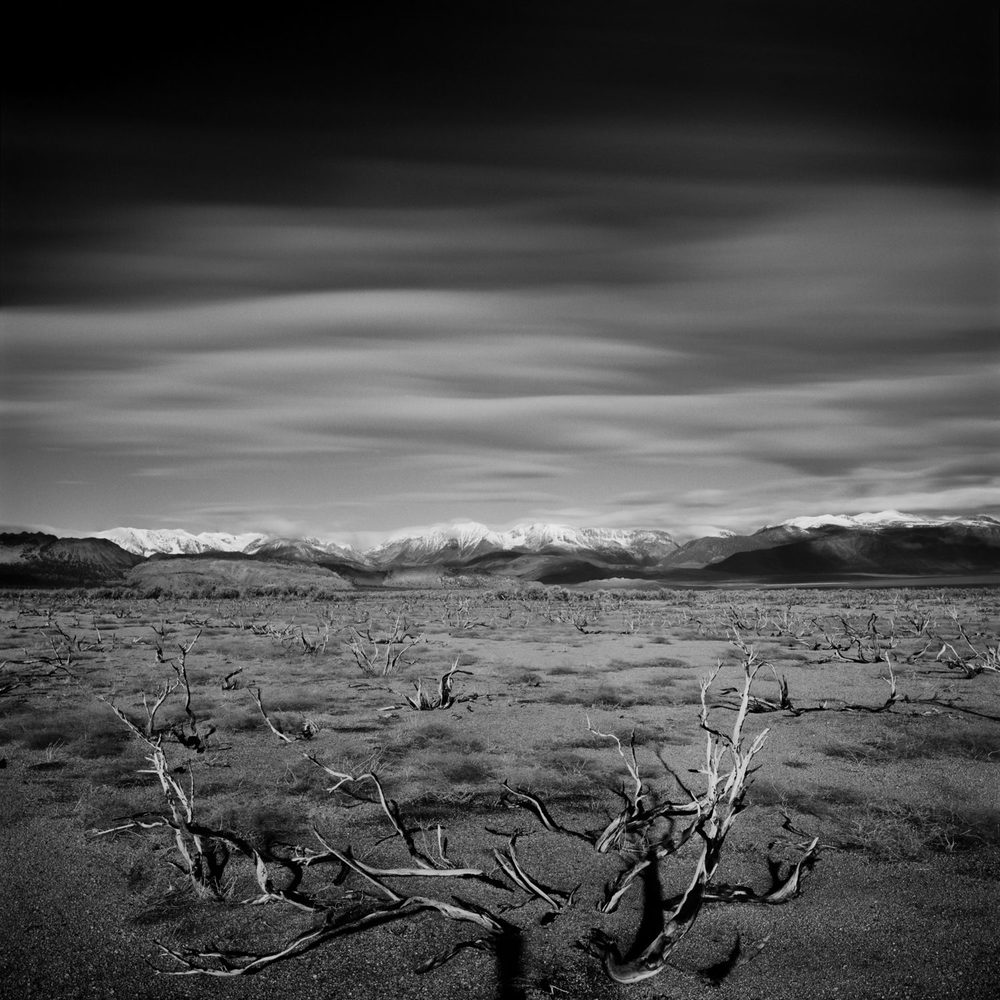 Eastern Plains of Mono Lake, 2015