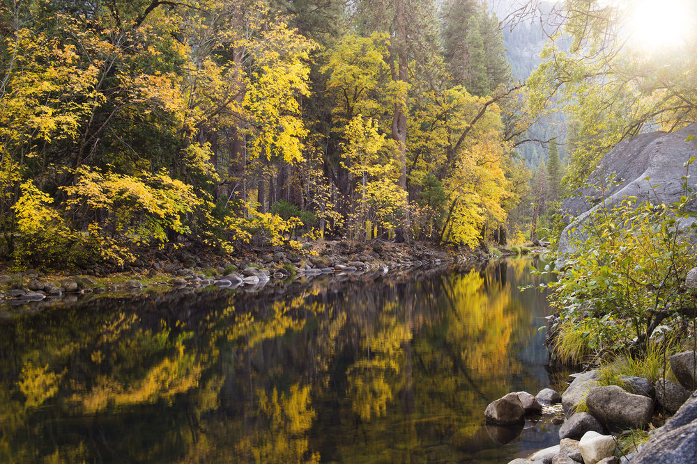 Merced_River_Autumn_5635.jpg