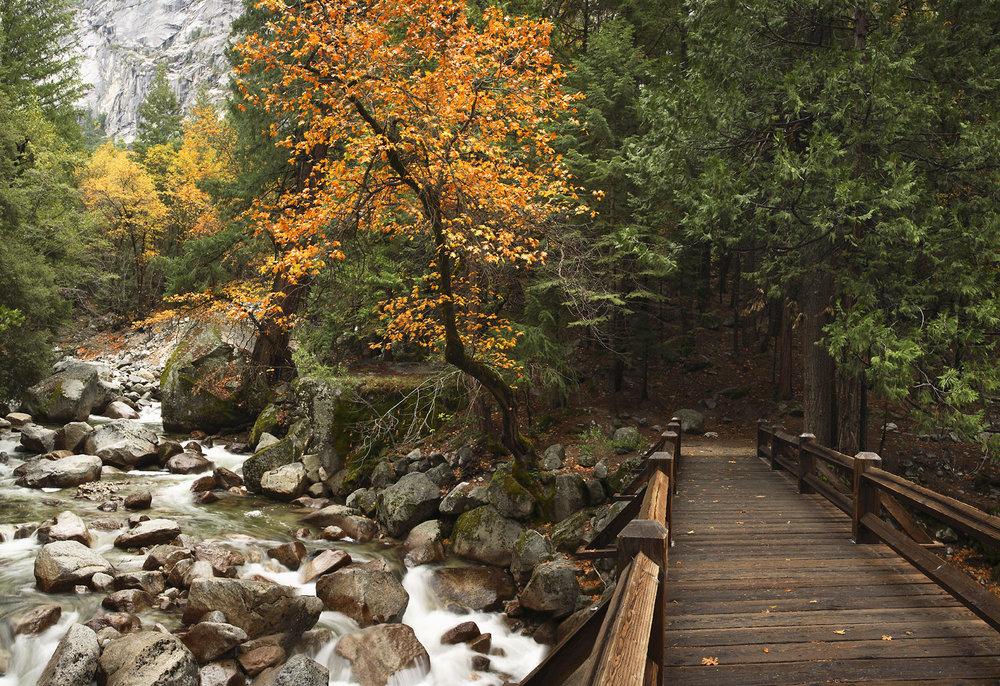 Yosemite_9286.jpg
