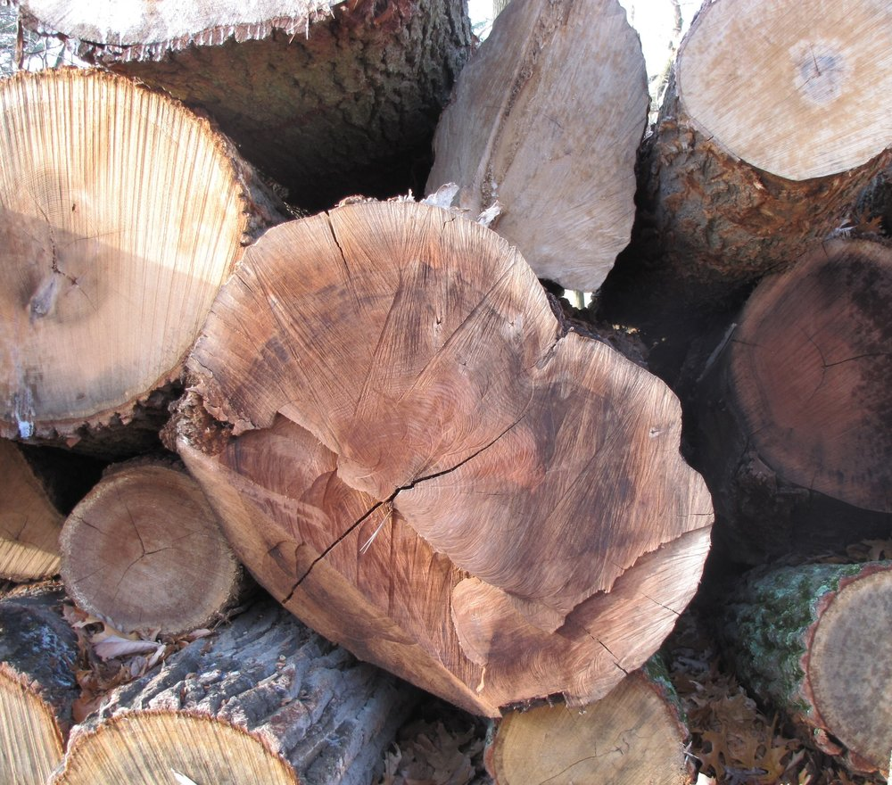 I select trees by hand for each project.