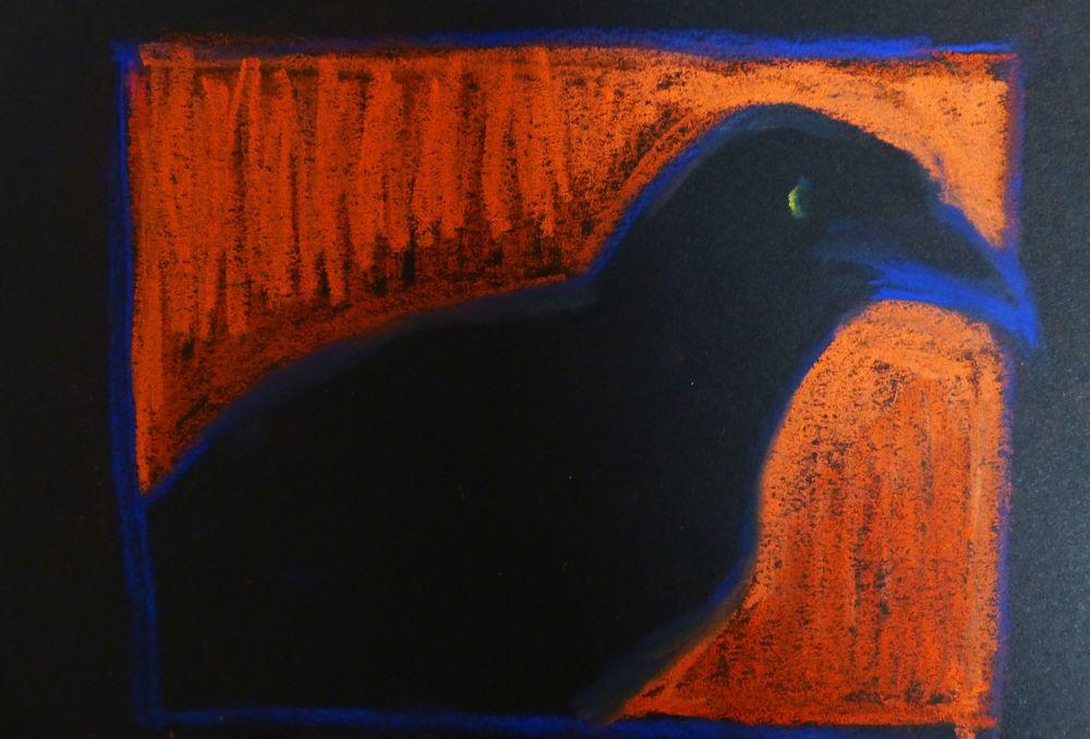 Raven chalk sketch
