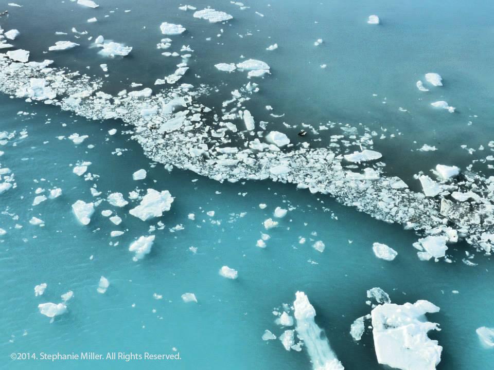 GlacierBay2.jpg