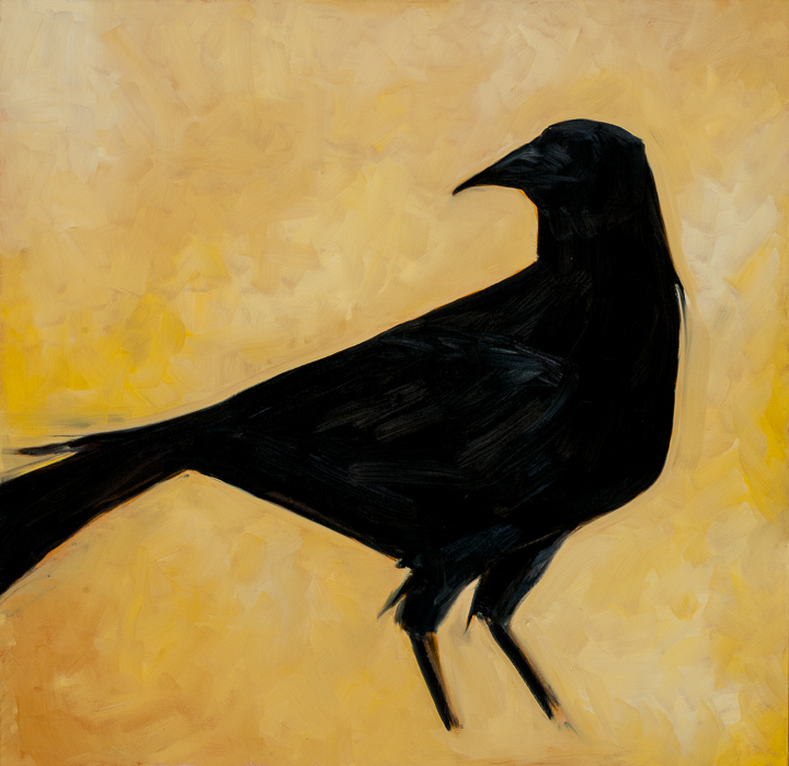 "Raven Turning  This oil painting on canvas is 36"" x 36"". I tried two new techniques on this canvas. I used blue in the highlight areas and I also varnished the raven when he was dry so that his body contrasts with the background."