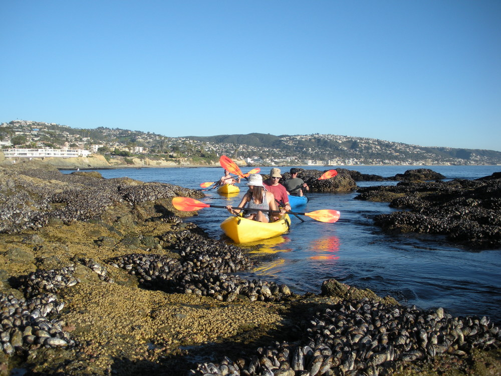 Kayaking In Laguna Tide Pools