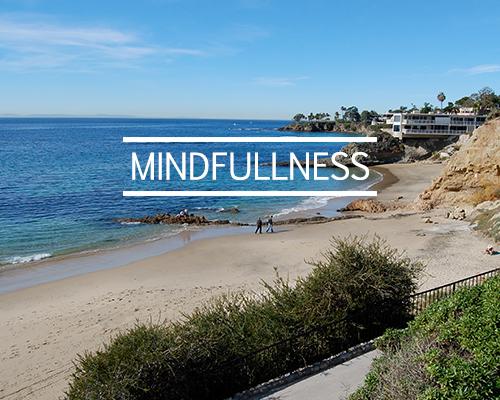 http://www.lavidalaguna.com/mindfulnesshome
