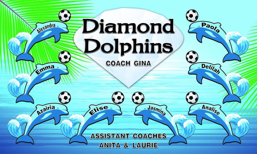 Diamond Dolphins soccer-01.jpg