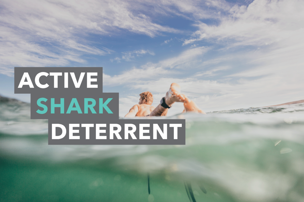 Sharkbanz-Cover-Image-2-Active-Shark.png
